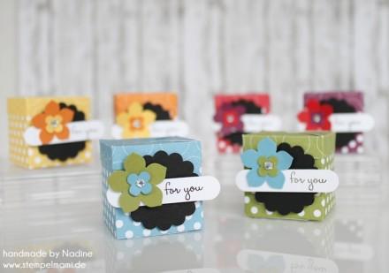 Stampin Up Swap Swaps Box Verpackung Schachtel Goodie Give Away 036