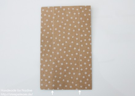 Anleitung Tutorial Stampin Up Box Verpackung Tasche Goodi Tag 004