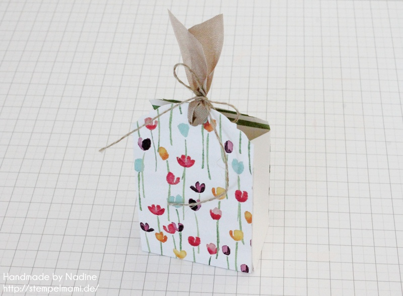 Anleitung Stampin Up Tutorial Gastgeschenk Tuete Goodie Give Away SAB Sale A Bration Stempelset So froh Goodie Bag Gift Idea Designerpapier Zarter Fruehling Stempelmami 052