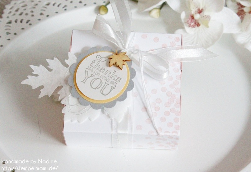 stampin up box verpackung schachtel goodie stempelmami nadine koeller envelope punch board 038