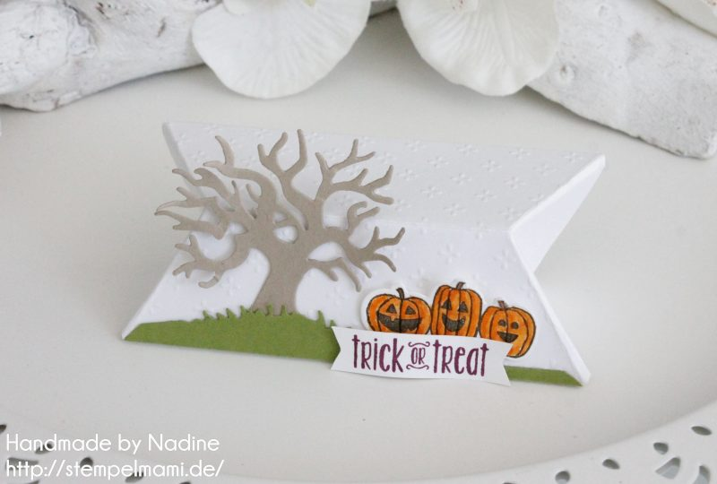 stampin-up-anleitung-tutorial-eckige-pillow-box-stempelmami-27
