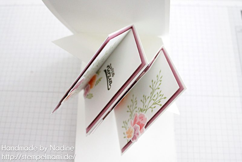 stampin-up-anleitung-tutorial-twist-pop-up-panel-karte-card-stempelmami-84