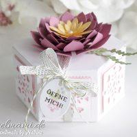 Fensterschachtel oder Sechseckschachtel mit Sukkulenten Blume