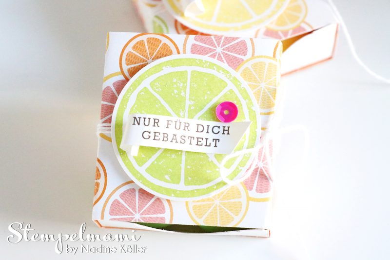 stampin up matchbox tutti frutti envelope punch board stanz und falzbrett fuer umschlaege box schachtel stempelmami 1