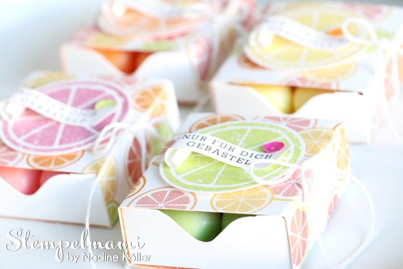stampin up matchbox tutti frutti envelope punch board stanz und falzbrett fuer umschlaege box schachtel stempelmami