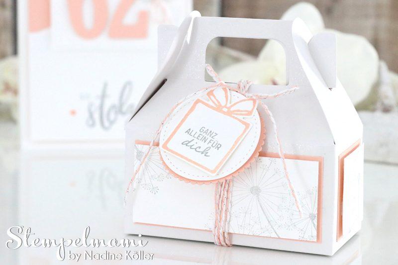 stampin up grusskarte und minischachtel suesse adventsgruesse liebevolle worte dandelion wishes stempelmami 2