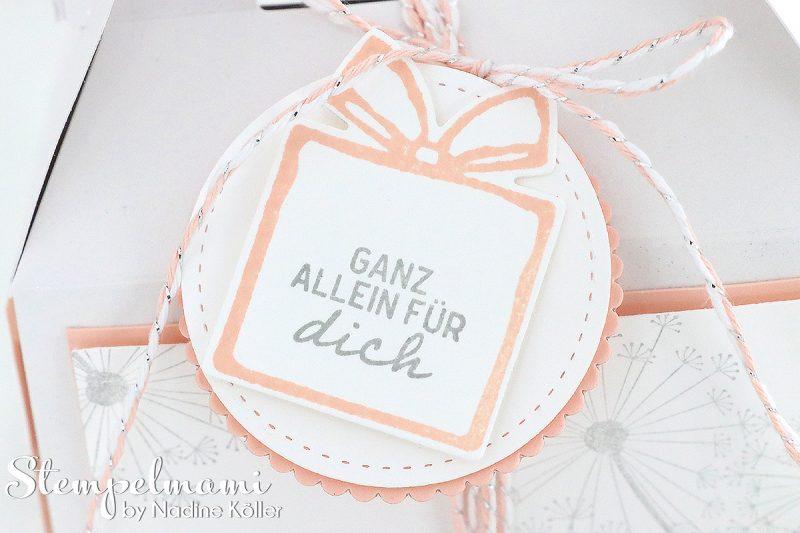 stampin up grusskarte und minischachtel suesse adventsgruesse liebevolle worte dandelion wishes stempelmami 3
