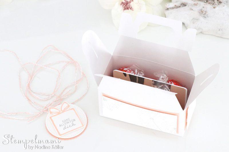 stampin up grusskarte und minischachtel suesse adventsgruesse liebevolle worte dandelion wishes stempelmami 5