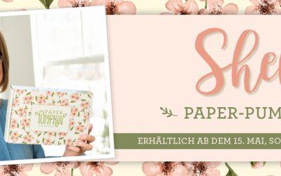 Shellis Exclusives Paper Pumpkin Set