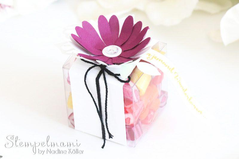 stampin up goodie oder gastgeschenk transparente mini geschenkschachteln stempelset liebelleien stempelmami 1