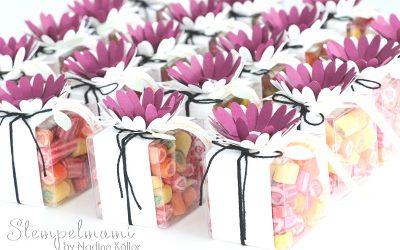 Transparente Mini Geschenkschachteln Liebelleien