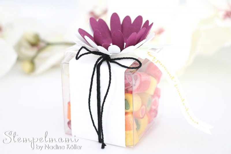 stampin up goodie oder gastgeschenk transparente mini geschenkschachteln stempelset liebelleien stempelmami