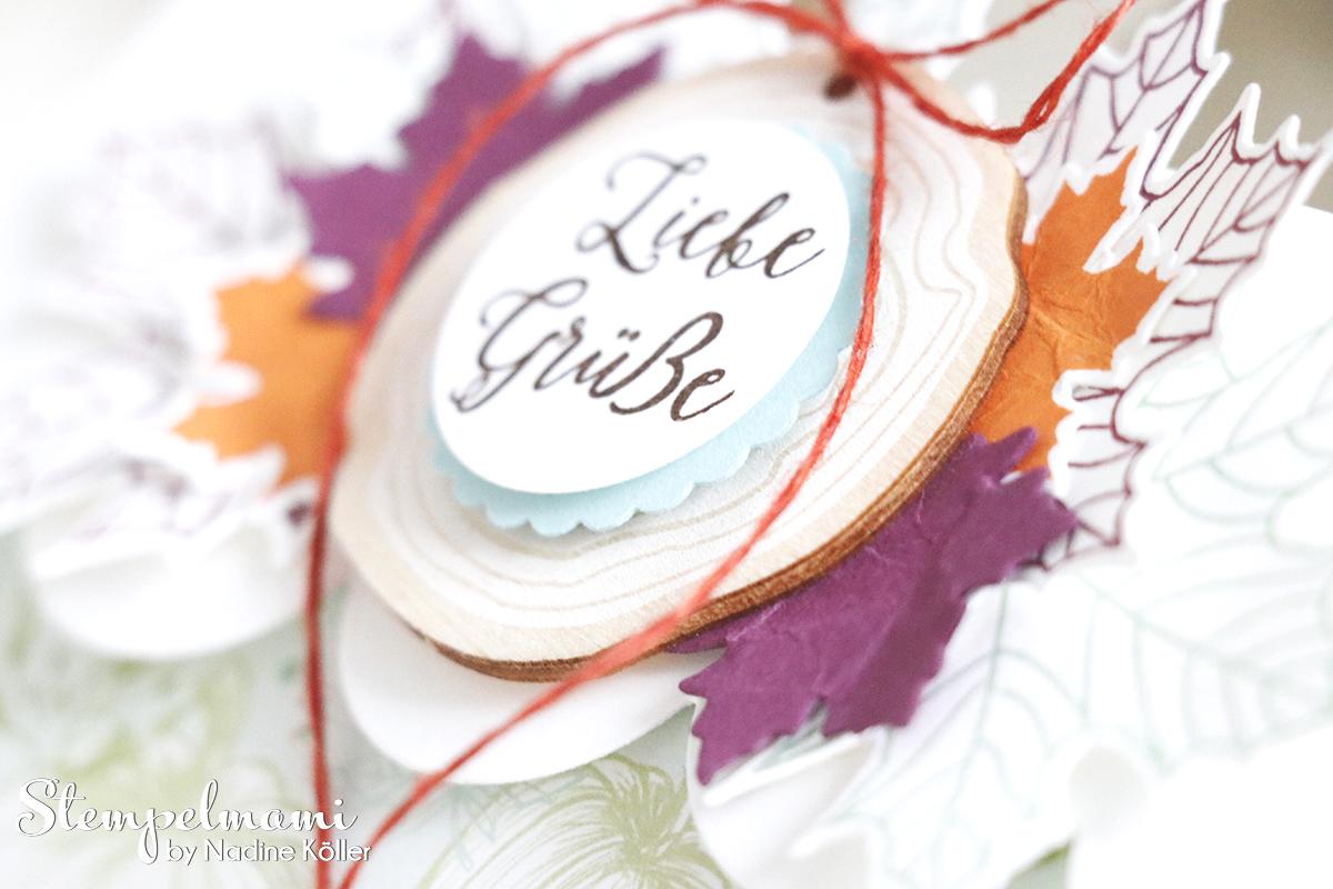 Stampin Up Goodie Jahr voller Farben Stempelmami Verpackung Gutscheinverpackung 2