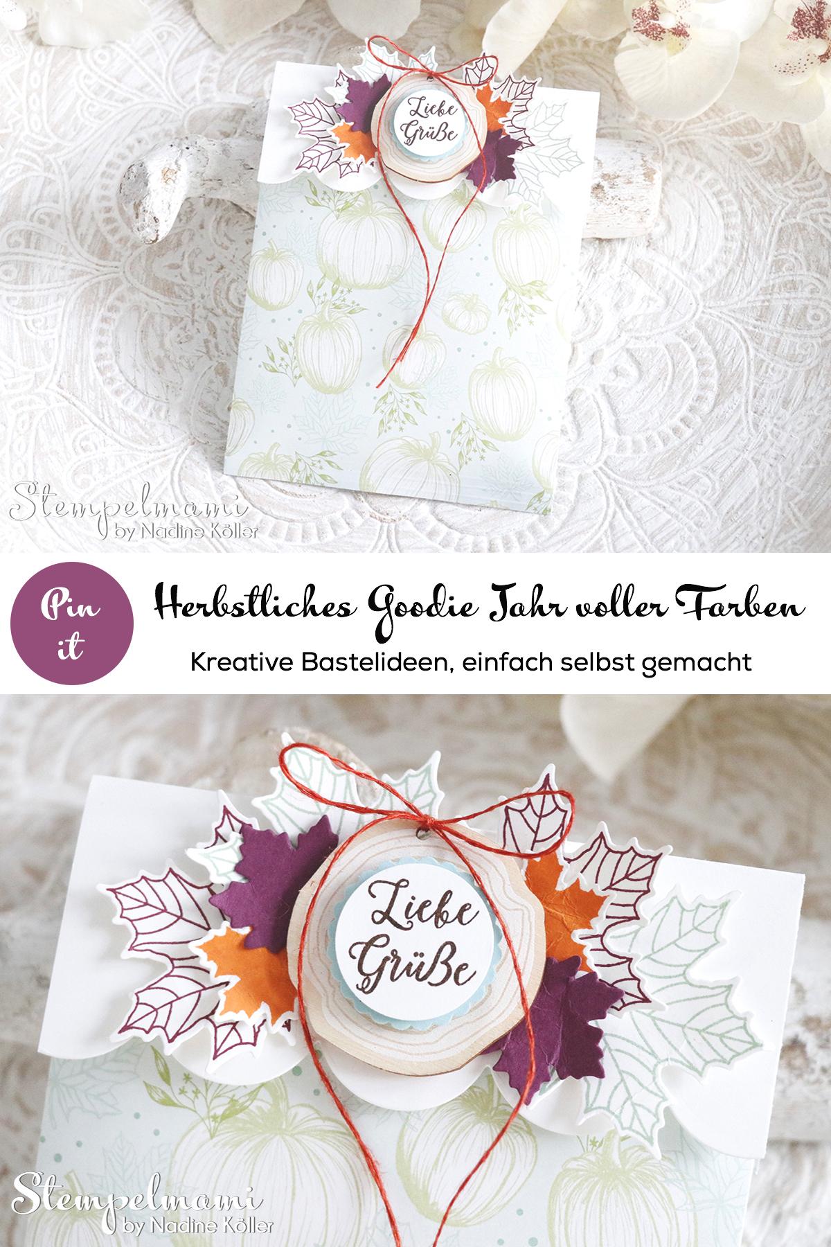 Stampin Up Goodie Jahr voller Farben Stempelmami Verpackung Gutscheinverpackung 3