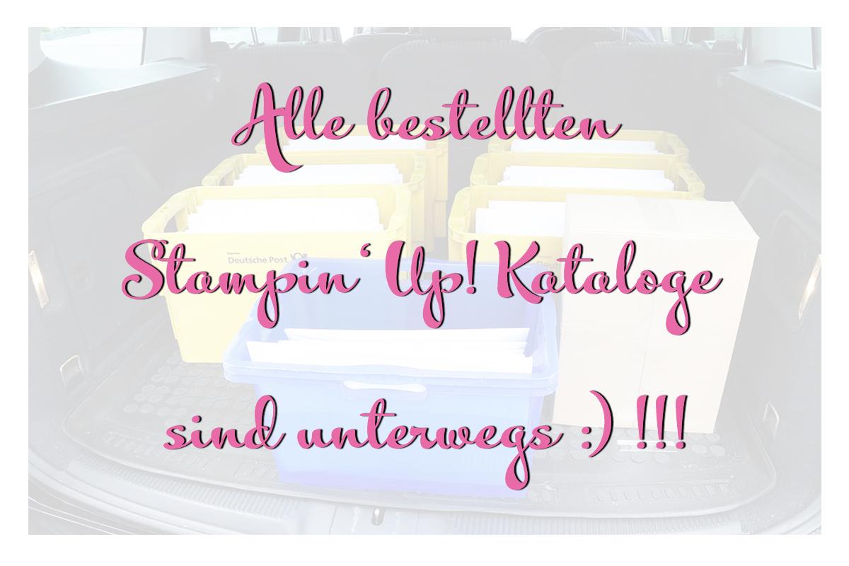Stampin Up Kataloge unterwegs Finde das goldene Bonbon Stempelmami 3