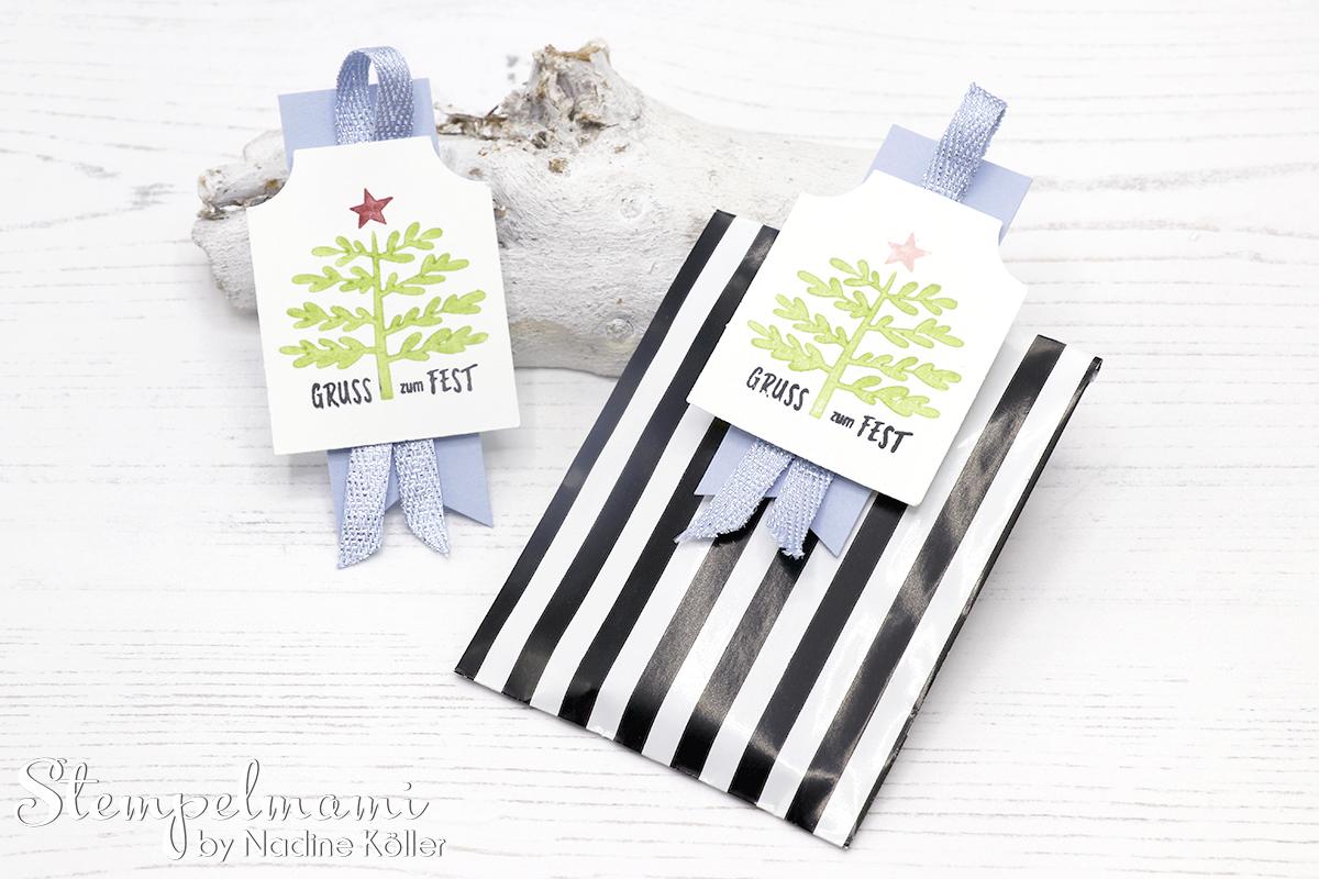 Stampin Up Weihnachtliche Geschenkanhaenger basteln Christmas Tags Tag Stempelset Basic für Feiertage Stempelmami 7